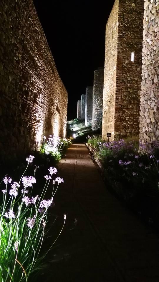 Avondbezoek Alcazaba